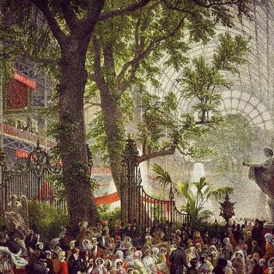 Elm Tree Great Exhibition 1851