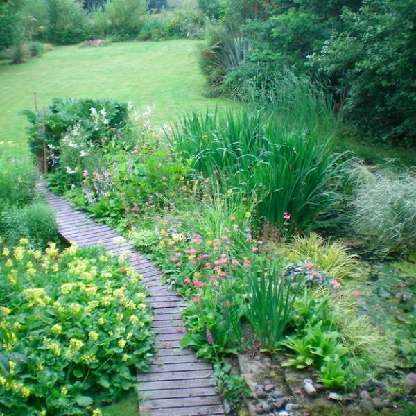 Andrew's transformed garden.