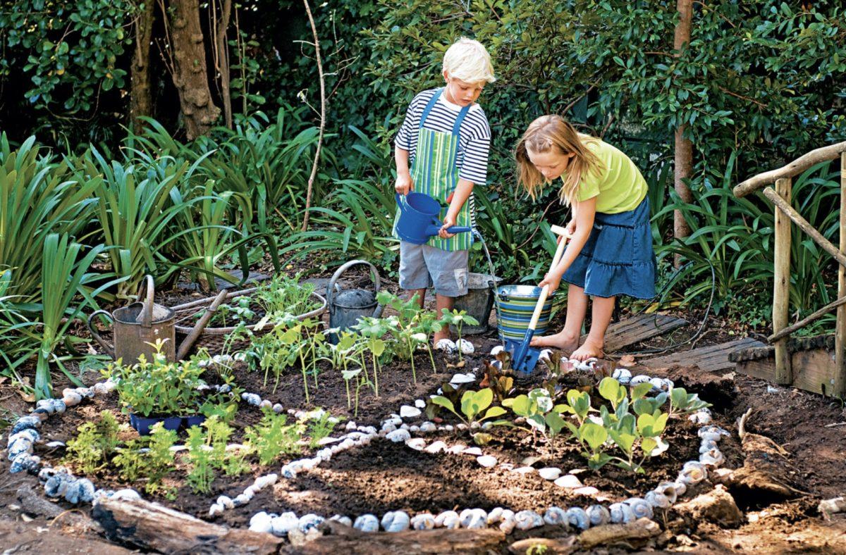 Chris Collns Kids Gardening