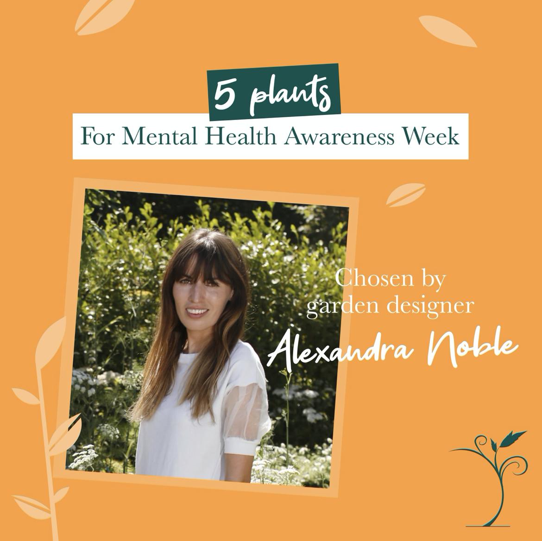 Alexandra Noble